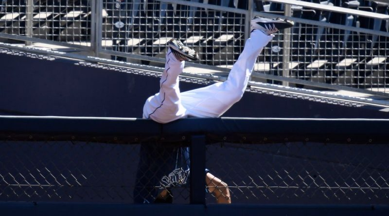 Manuel Margot makes catch of the year and Rays beat Astros