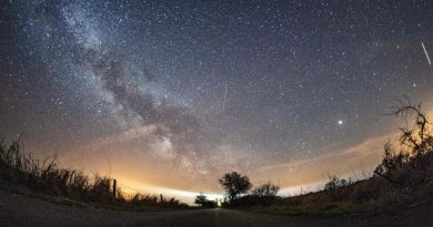 The Orionid Meteor Shower Can Be Seen This Week