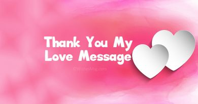 Thank You My Love Messages and Quotes – WishesMsg