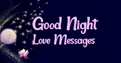 Good Night Love Messages and Romantic Wishes | WishesMsg