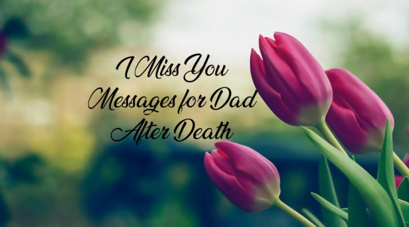 Miss You Messages For Dad After Death – missing you